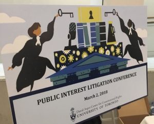 Litigating the Public Interest within the Context of Private Rights